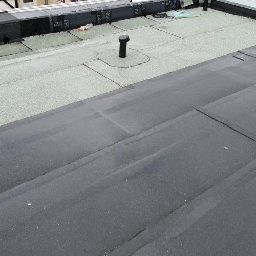 KfW 40 Plus Mehrfamilienhaus: Dachbegrünung